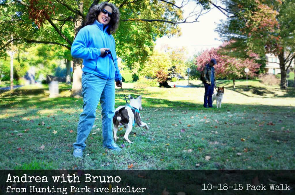 EastFallsLocal 10-18 fall foliage mcmichael andrea bruno FIX