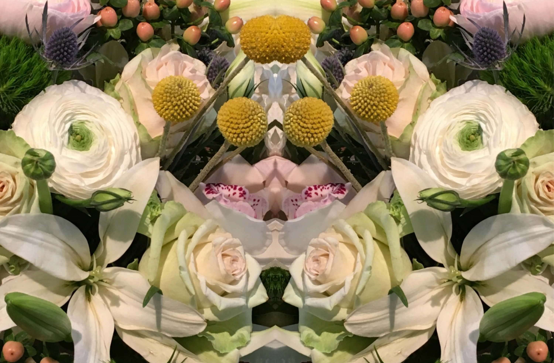 EastFallsLocal flower show mirror image