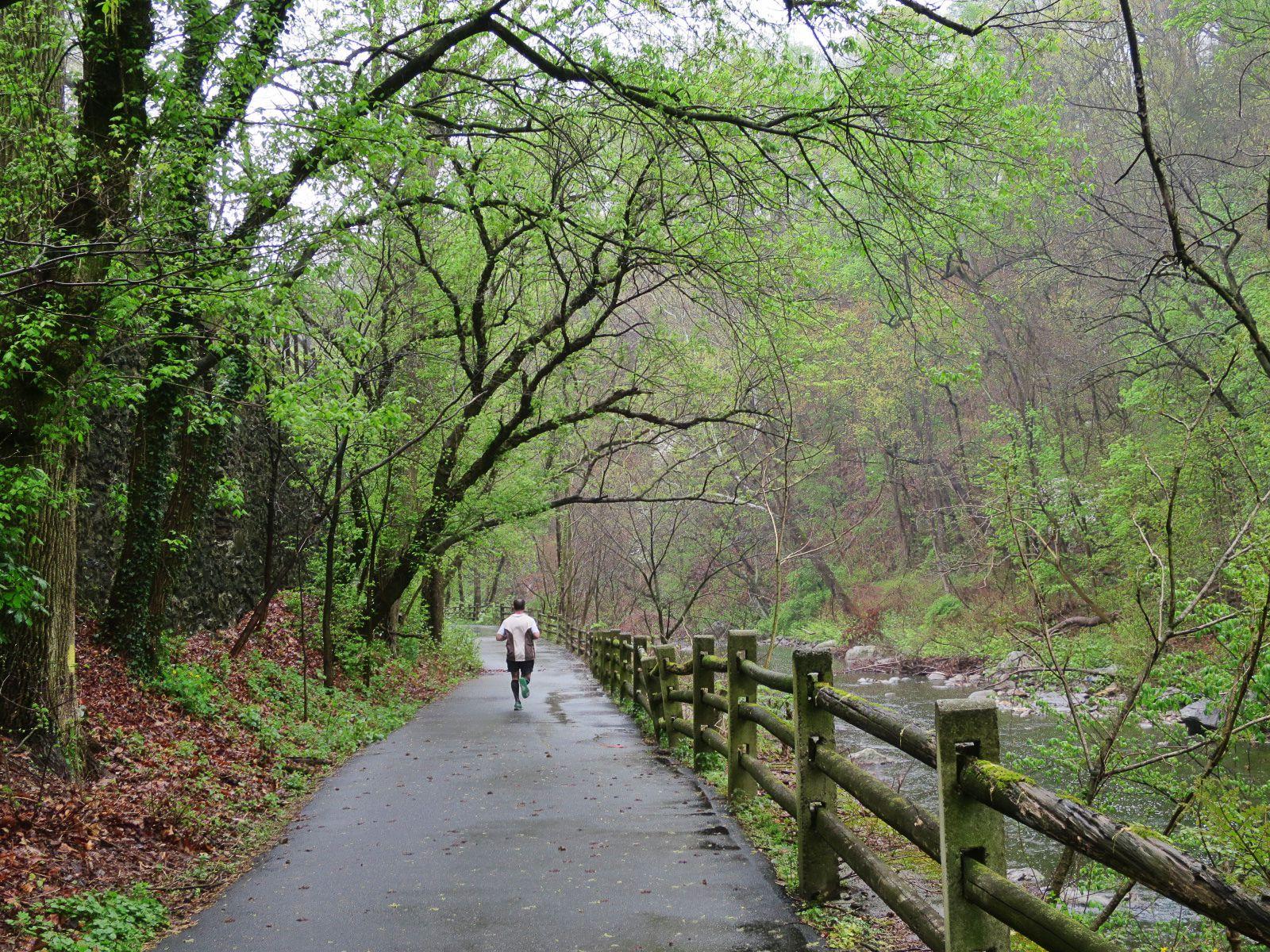 EastFallsLocal 4-23 Wissahickon runner path forest creek