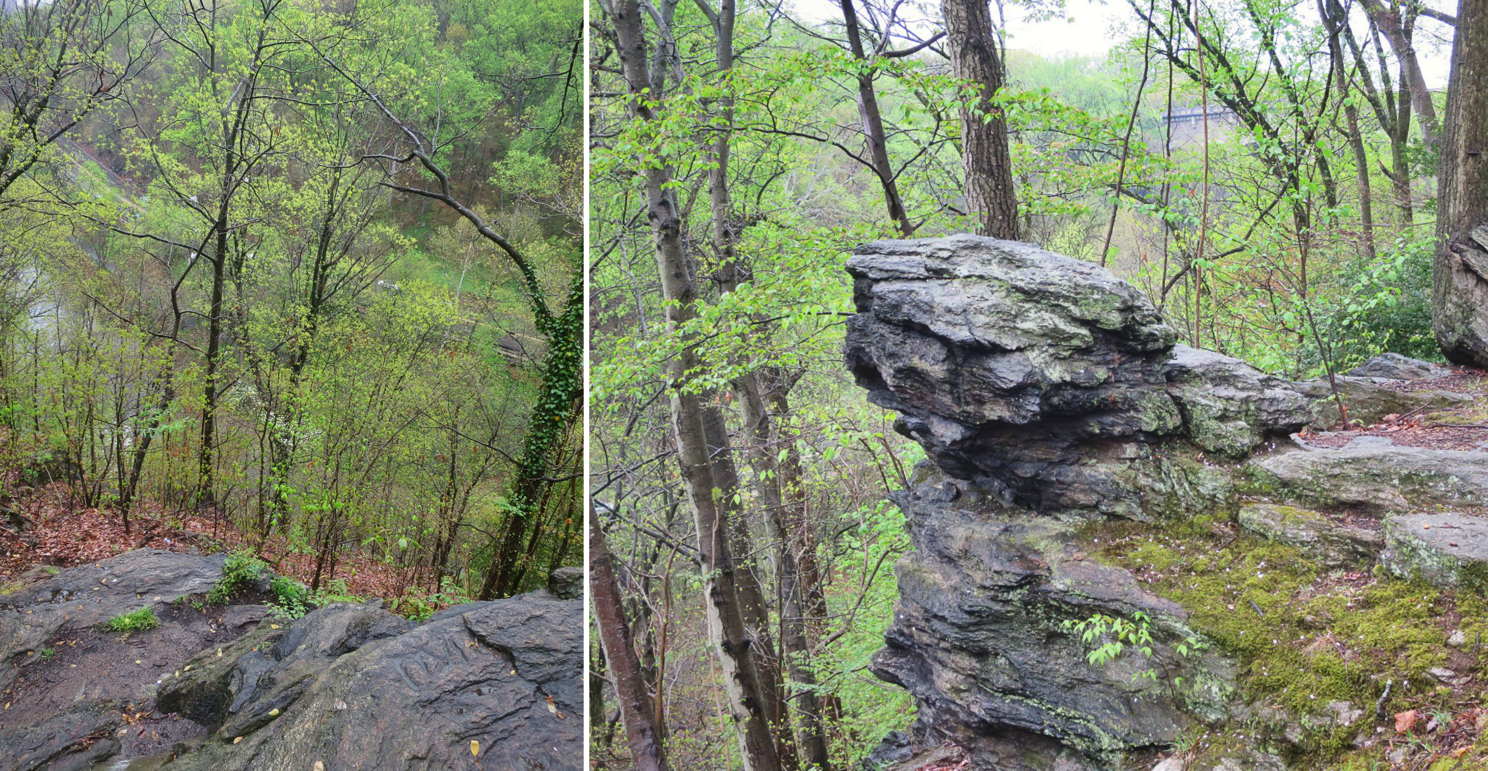 EastFallsLocal 4-23 lovers leap rocky collage