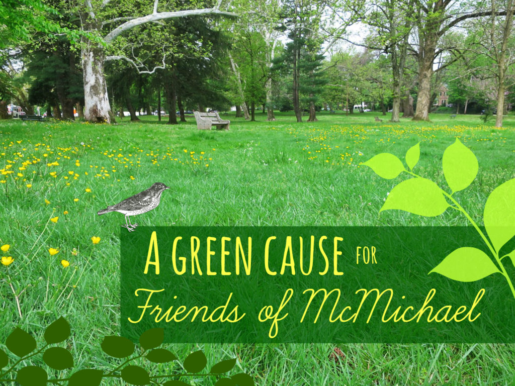 EastFallsLocal 5-11 McMichael buttercups and bench a leafy green cause