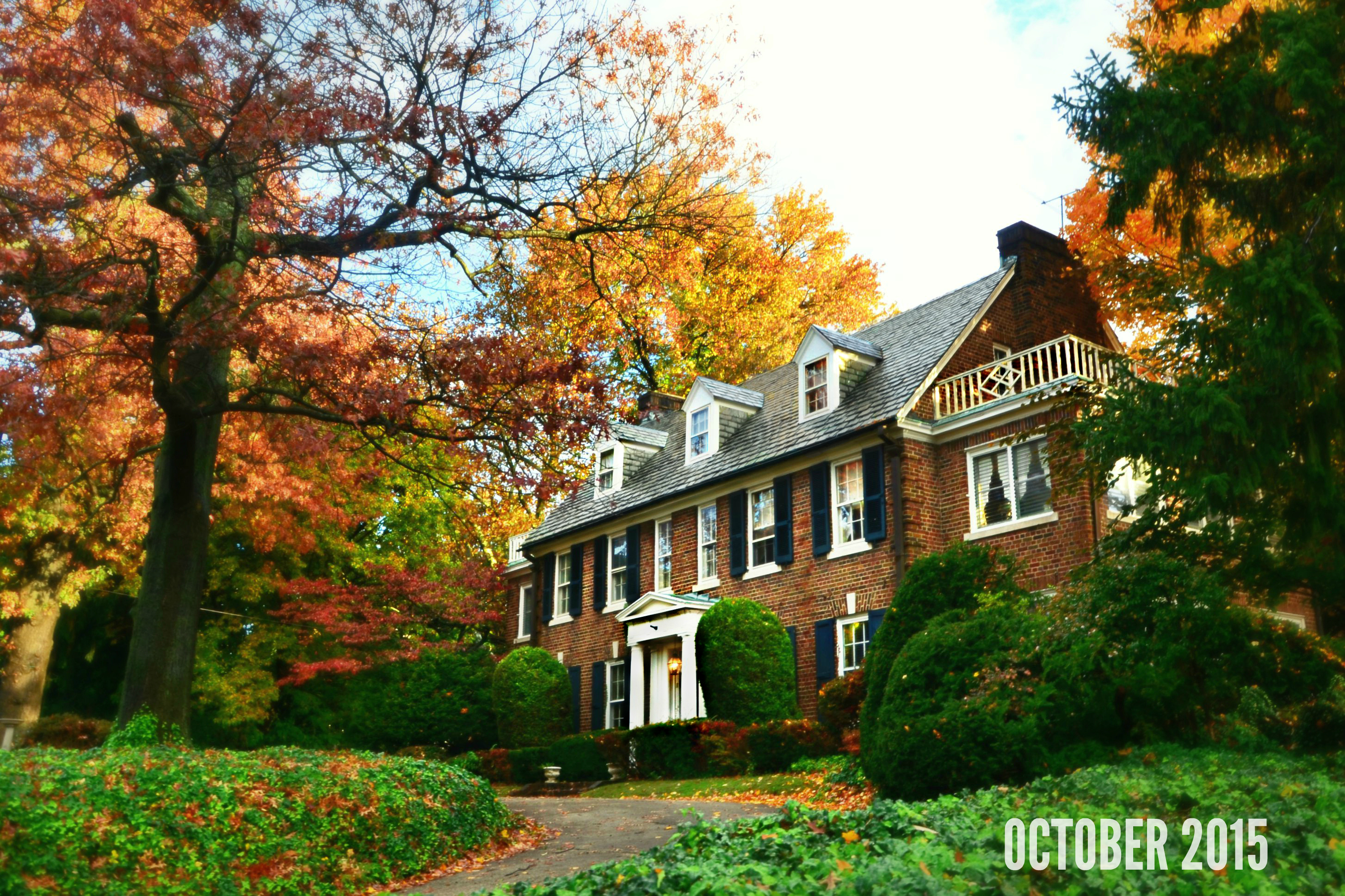 EastFallsLocal 10-29 mcmichael park fall foliage Grace Kelly House from side 5 framed wider 2 px focus OCT