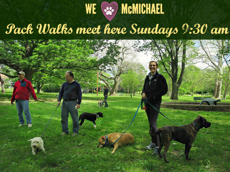 EastFallsLocal 5-15 mcmichael park pack scene TEXT resize