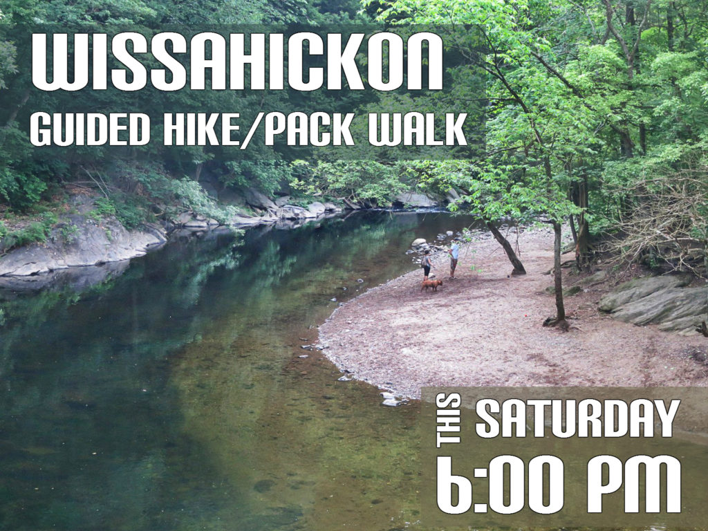 EastFallsLocal dog beach Wissahikcon walk saturday 6 pm