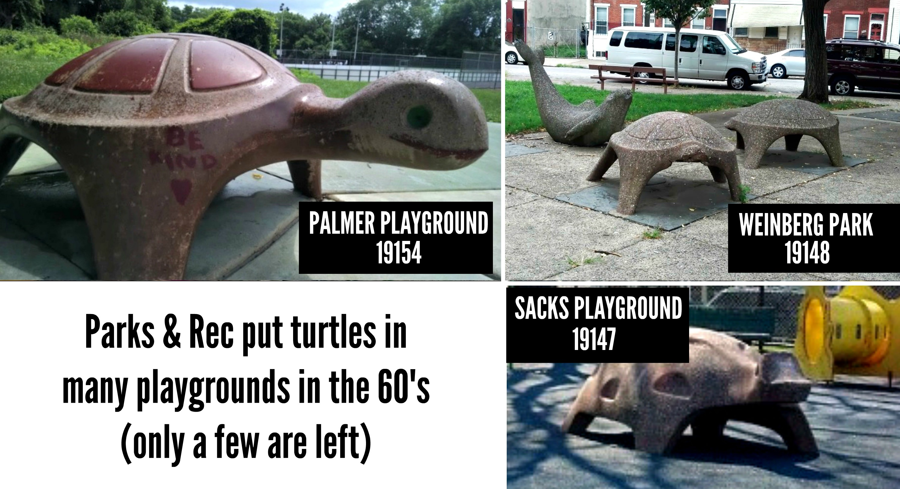 EastFallsLocal turtles around phila parks collage