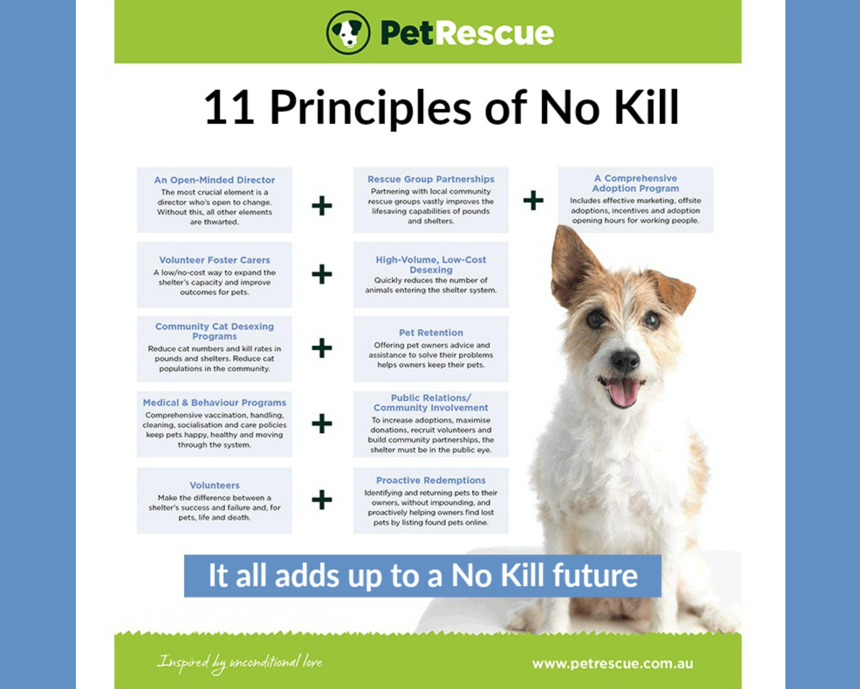 EastFallsLocal 11 principles of No Kill pet rescue resize