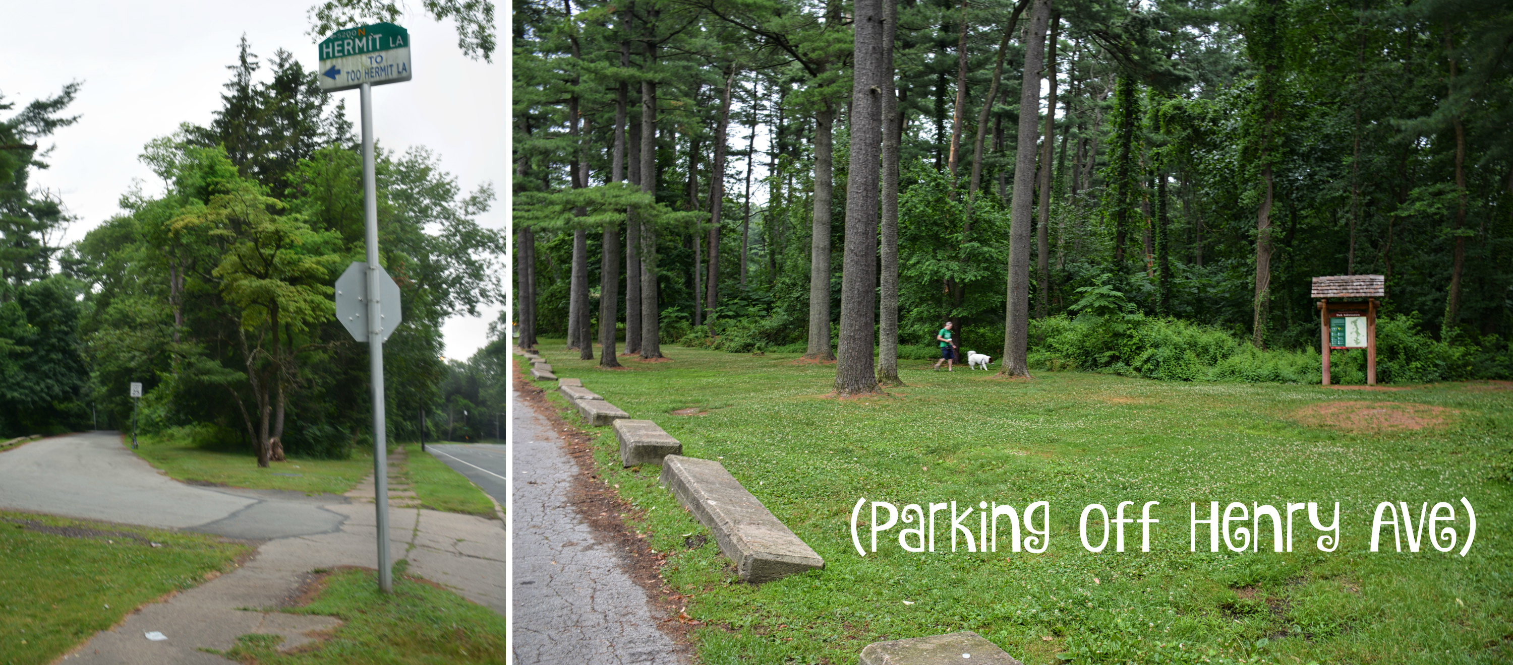 EastFallsLocal collage parking txt
