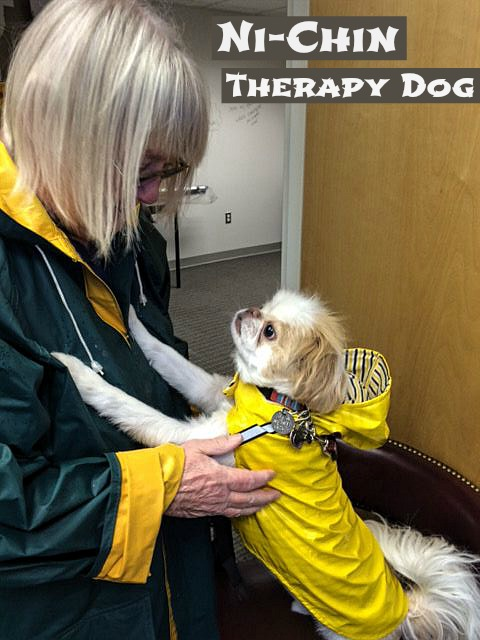 Ni-Chin therapy dog.w TEXT