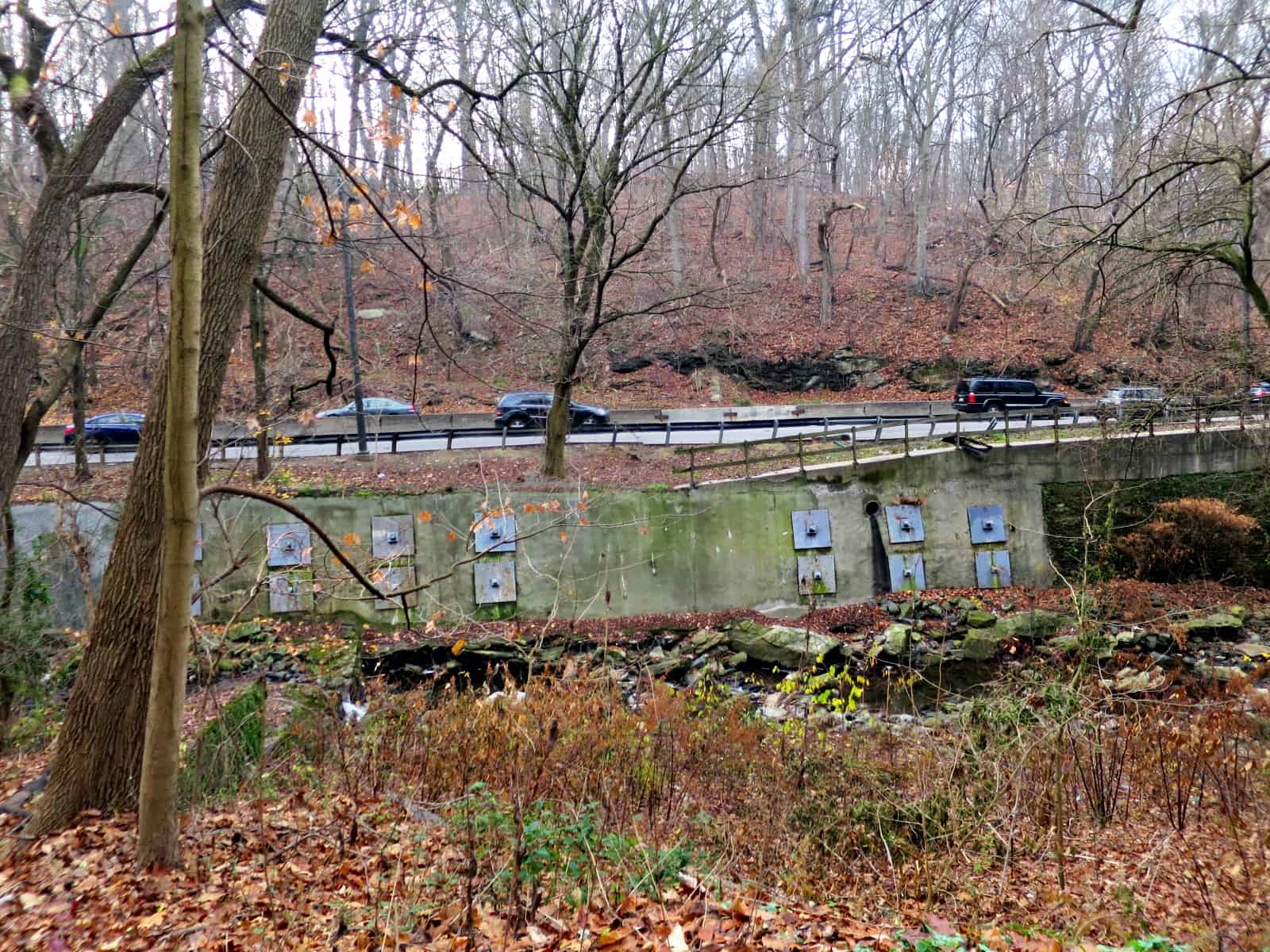 eastfallslocal-12-11-wissahickon-creek-lincoln-drive-kinda-scary-rivets-3-pm